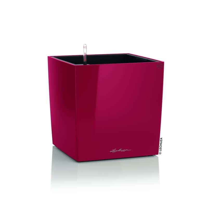 Lechuza Cube Premium 50 Blumentopf Bewässerungssystem 50x50x50 cm 61 L 7 Farben Pflanzgefäß